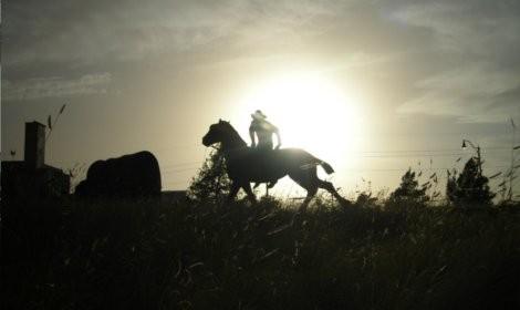 Ride_Em_Cowboy